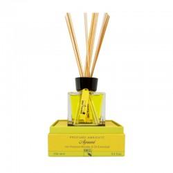 Zapach z patyczkami do domu CITRUS 100 ml - Idea Toscana
